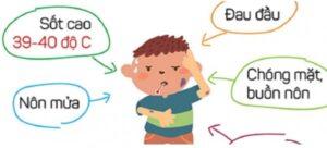 Dấu hiệu nhận biết bệnh Viêm Não Nhật Bản B