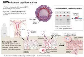 Vacxin phòng ngừa ung thư cổ tử cung