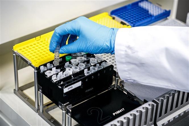 Mỹ dự định phân phối vắc xin ngừa Covid-19 vào tháng 12 với giá 39 USD