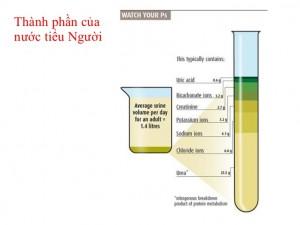 nc 300x225 Các thành phần hóa học trong nước tiểu nói gì về sức khỏe của bạn (phần I)