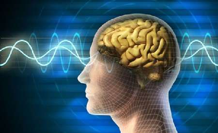 Thuốc hoạt huyết dưỡng não : Top 10 loại thuốc bổ não tốt nhất hiện nay